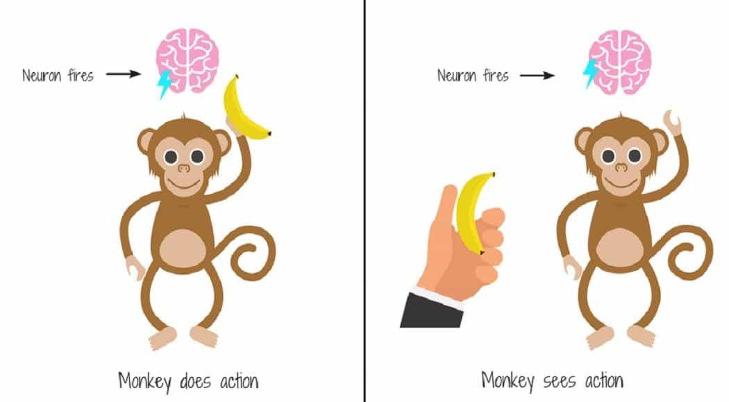 Neuroni specchio: imitami e ti dirò chi sei